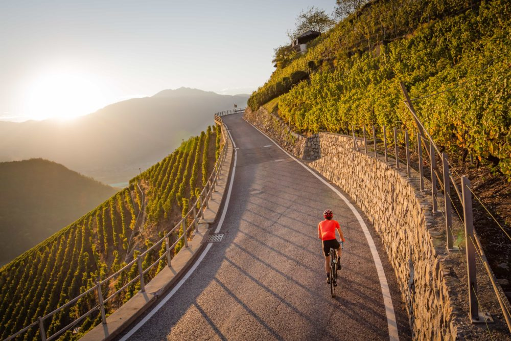 Sunset ride in the Chablais vineyards